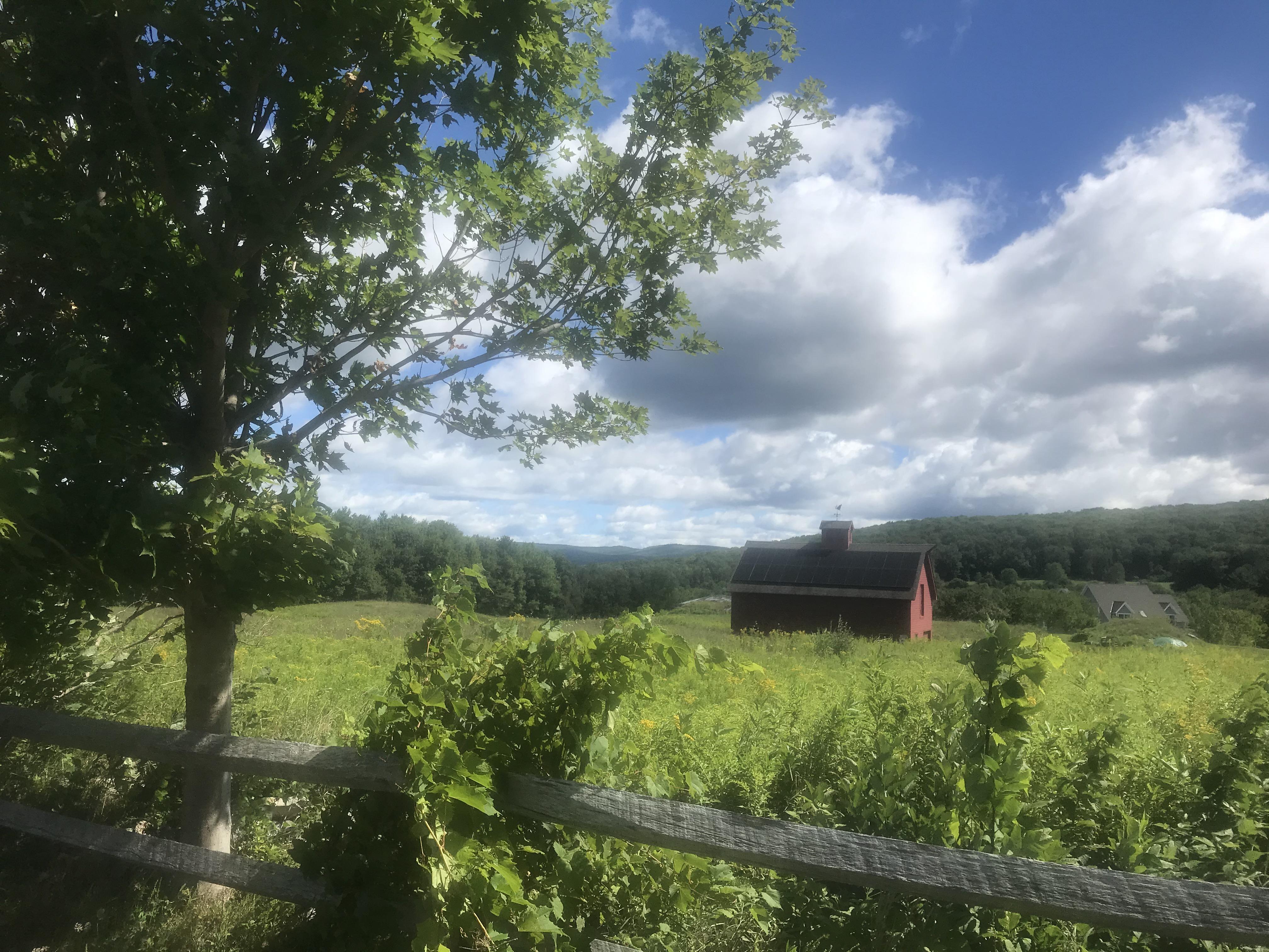 Berkshires scene